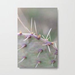 Texas Cactus Metal Print