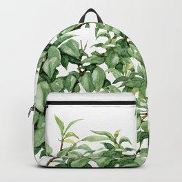 botanic Backpack