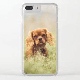 Cute Puppy - Little Dog Clear iPhone Case