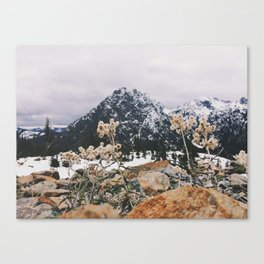 Mountains + Flowers Canvas Print