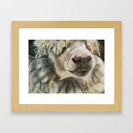 Nature Drawing: Sheep Framed Art Print