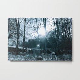 Winter's Bones Metal Print