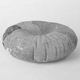 Utah - Trilobite Fossil Shards Floor Pillow
