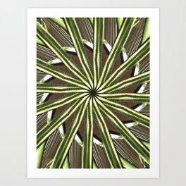 Cactus Garden Kaleidoscope 9 Art Print