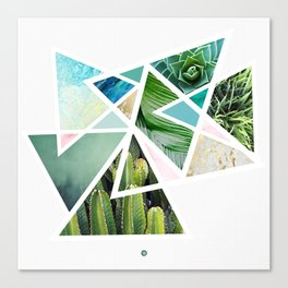 Triangular nature Canvas Print