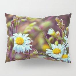 Daisy Daisy Pillow Sham