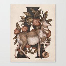 Letter A: Antelope & Apricots Canvas Print