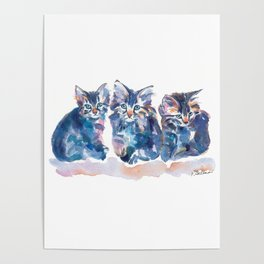 Crazy Quilt Kittens Poster