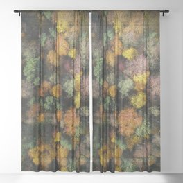 Autumn Forest - Aerial Photography Sheer Curtain