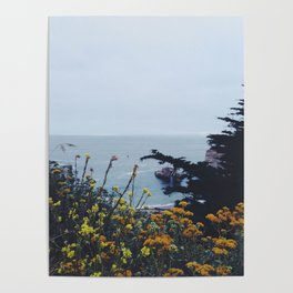 Floral Coast at Dusk Poster