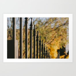iron fence, yellow leaves Art Print