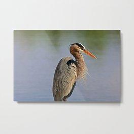 Heron in the Slough IV Metal Print