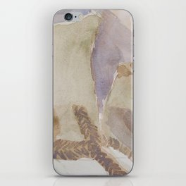 Duochrome Still Life iPhone Skin