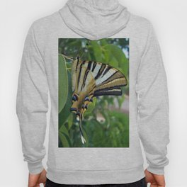 Swallowtail With Partially Closed Wings Side View Hoody