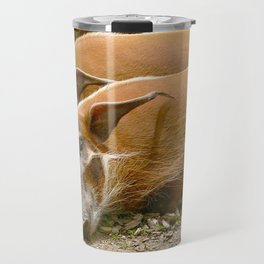 Red River Hogs taking a nap Travel Mug