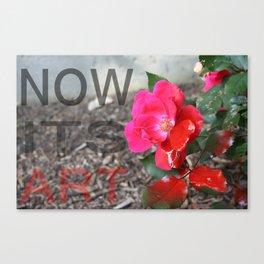Now its art.  Canvas Print