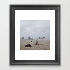 Bandon Beach Bird Framed Art Print