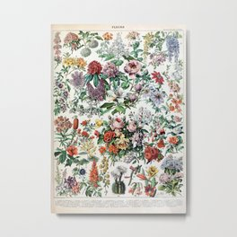 Adolphe Millot - Fleurs C - French vintage poster Metal Print