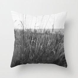 Ray Roberts 03 Throw Pillow