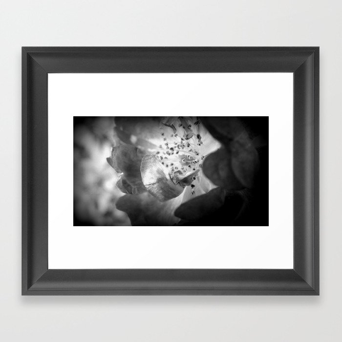 Light Comes From Within Framed Art Print