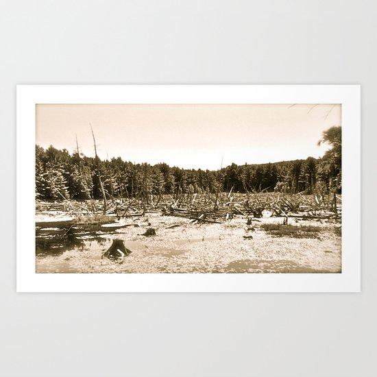 Horizontal Image Art Print