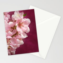 Peachblossom Stationery Cards