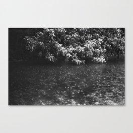 San Marcos River Canvas Print