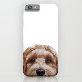 Labradoodle Brown Original  iPhone Case