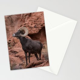 Desert Bighorn, Valley of Fire - III Stationery Cards