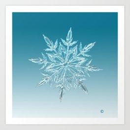 Blue Green Ice Crystal Art Print
