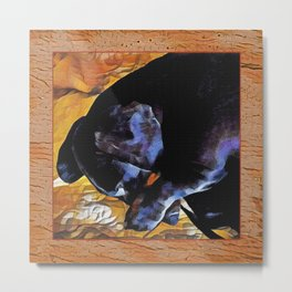 dachshund sleeping Metal Print