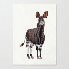 Watercolour Okapi Drawing Canvas Print