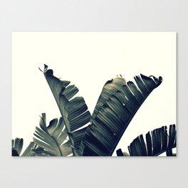TROPICO ALT Canvas Print