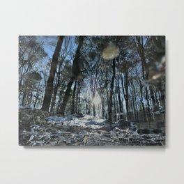 Natures Mirror Metal Print