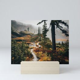 Pacific Northwest Forest Trail Mini Art Print
