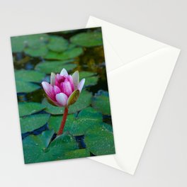 Water Lily 1 Stationery Cards