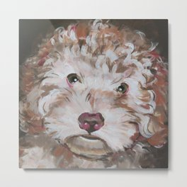 Bichon Poodle Cocker Mix Contemporary Pet Portrait Metal Print