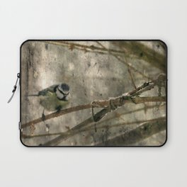 Winter in my garden Laptop Sleeve