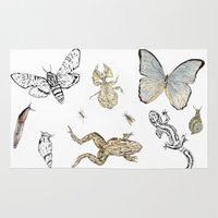 insects Area & Throw Rugs featuring Insects by Claire Bond