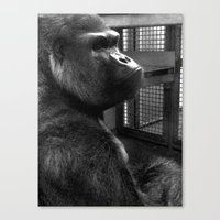 ape Canvas Prints featuring Ape by x_al
