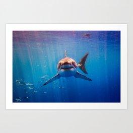 Great White Shark-5 Art Print