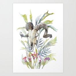 Short Day / Ram Animal Skull and Sarracenia Carnivorous Plant Platycerium Leaves Surreal Art Print