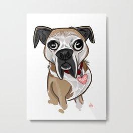 Molly the Dog Metal Print