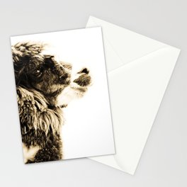 Groucho Stationery Cards