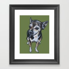 Artie the Chihuahua Framed Art Print