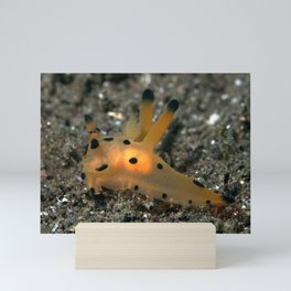 Thecacera pacifica (Pika nudibranch) inner glow Mini Art Print