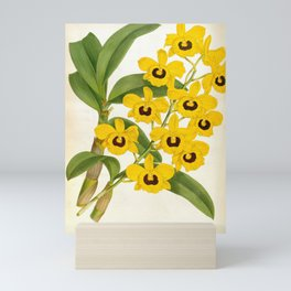 Vintage Yellow Leafy Orchids Lindenia Collection Mini Art Print