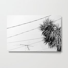 Connecting Lines Metal Print