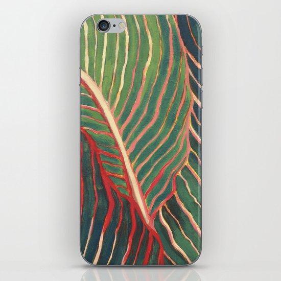 Canna Leaves iPhone & iPod Skin