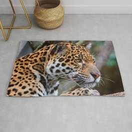 jaguar predator face eyes mottled Rug